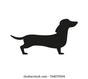 Silhouette of the dachshund on the white background. Vector illustration.
