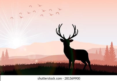 Silhouette a deer the feeding in the bright sunset. Vector