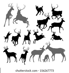 Silhouette Deer including fawn, doe bucks and stag. Also two stags fighting ans a family group set