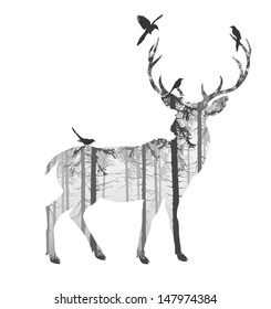 silhouette of a deer with pine forest and birds, black and white colors, white background, vector illustration