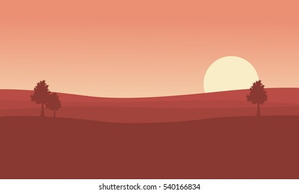 Silhouette of desert and tree at sunset landscape