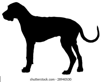 great dane silhouette images stock photos vectors shutterstock rh shutterstock com great dane head clipart