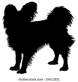 Silhouette of a dog of breed papillon