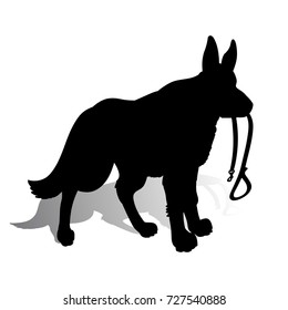 Silhouette of a Dog (German Shepherd) holding a leash, on a white background.Vector