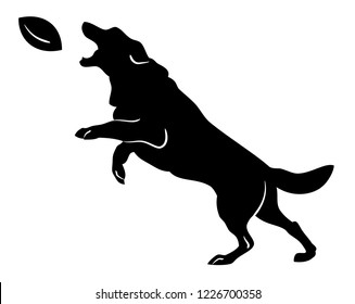 Silhouette of a dog jumping for a rugby ball