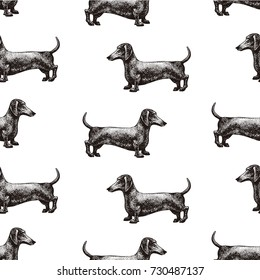 Silhouette of a dog. Vector illustration of dachshund. Hand drawn vintage illustration.