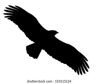 Silhouette of the Eagle in flight.