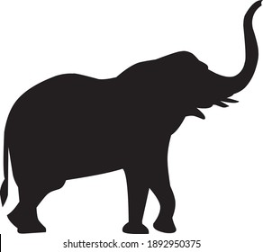 silhouette elephants on white background. vector eps 10