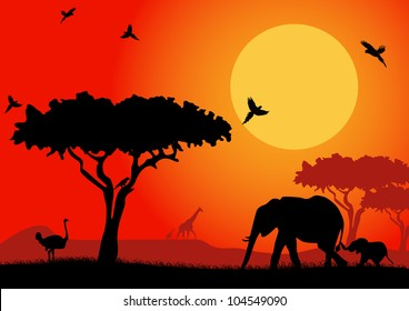 Silhouette of an elephants, ostrich and stunning eagle in the African desert