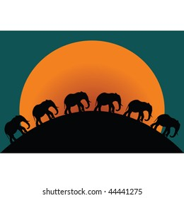 Silhouette of elephants at twilight