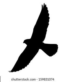 Silhouette of the Falcon in flight.