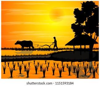 silhouette farmer plow in paddy field,sunlight vector design