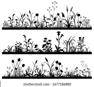 Silhouette of Field flowers and garden grass landscape set, butterfly, vector illustration