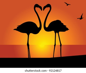 Silhouette of the flamingo on a background of the evening sky