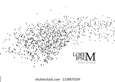 Silhouette of a flock of birds. Vector