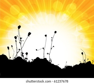 silhouette of flowers with sunset
