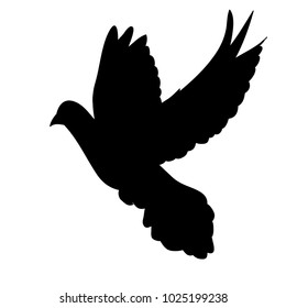 silhouette flying dove