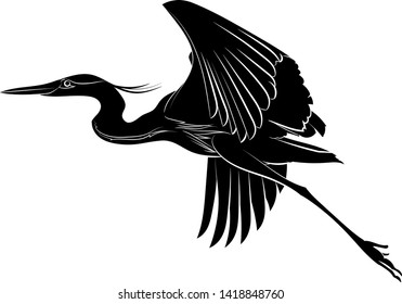 Silhouette of a flying great blue heron. Graphic drawing. Vector