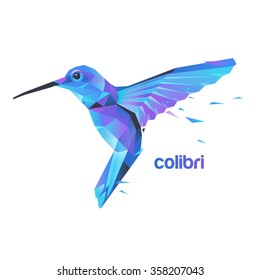 Silhouette flying hummingbirds. Stylized colibri illustration.