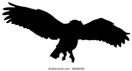 silhouette of flying owl