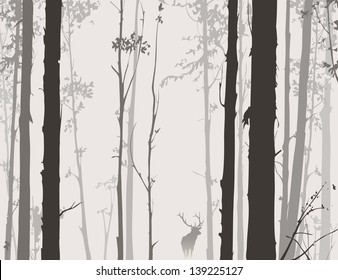 silhouette of the forest with deer