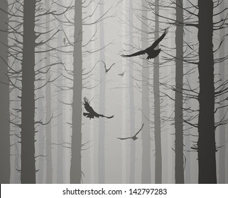 silhouette of the forest with flying birds. grays