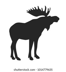 silhouette of the forest moose