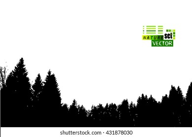 Silhouette of a forest of trees. Vector