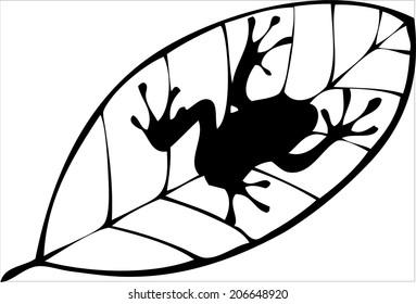 Silhouette frog on leaf