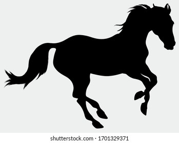 Silhouette of a galloping horse. Stallion excitedly pulled his ears back and moving at a fast pace.