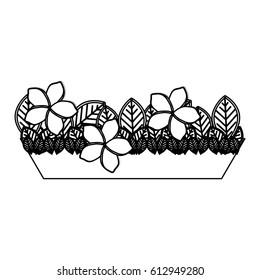 silhouette garden flower plantpot decorative vector illustration