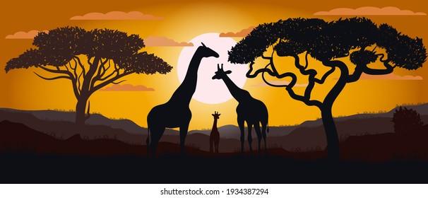 Silhouette von Giraffen der afrikanischen Savanne. Landschaft. Afrika. Helle Vektorgrafik. Tierwelt.