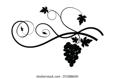 Silhouette grapes