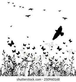 Silhouette of grass and flying birds. Vector