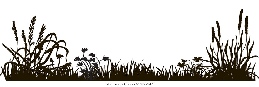 silhouette of grass and plants