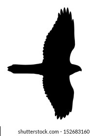 graphic about Printable Hawk Silhouette for Window named Hawk Silhouette Photos, Inventory Images Vectors Shutterstock