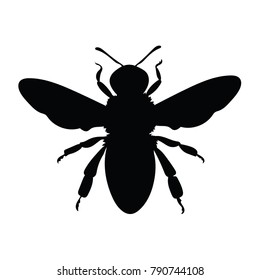 Silhouette of a honey bee. Contours of a wasp. Black bee logo.