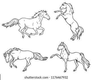 silhouette horse line
