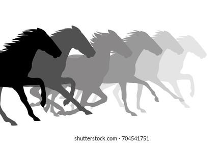 Silhouette horses running