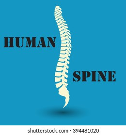 Silhouette of a human spine, medicine, clinic symbol design,  vector
