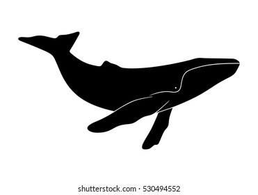 Silhouette of humpback whale. Illustration isolated on white background.