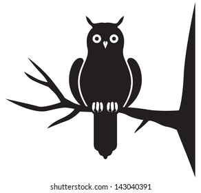 Silhouette image of an owl on a branch
