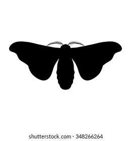 Silhouette insect. butterfly Bombyx mori.  Sketch of butterfly. butterfly silhouette isolated on white background. butterfly Design for coloring book.  hand-drawn butterfly. Vector illustration