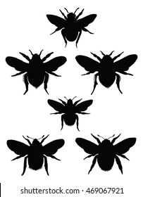 Silhouette insects. Collection of flies. Line art. Black and white drawing by hand. Seth ornamental insects. Wasp. Bumblebee. Hornet.