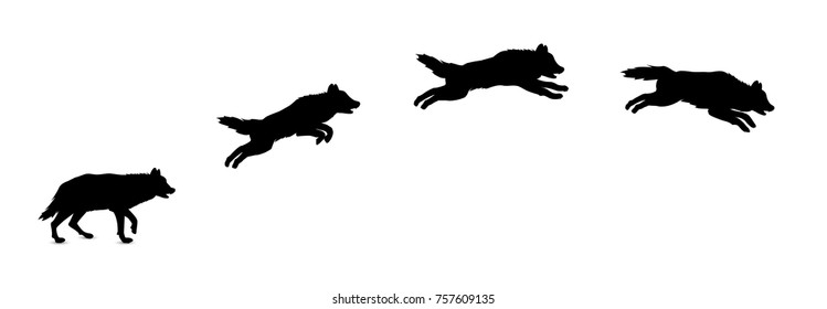 Silhouette of jumping wolf.