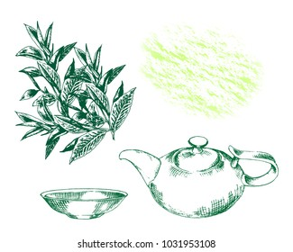 Silhouette kettle and cup with tea branches leaves. Hand drawn sketch for print, card, wrapping, menu, label, sticker  for black or green tea. Design elegance card. Vector illustration.