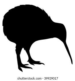 silhouette of kiwi