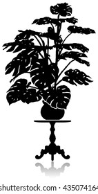 A silhouette of a large monstera standing on a round coffee table.