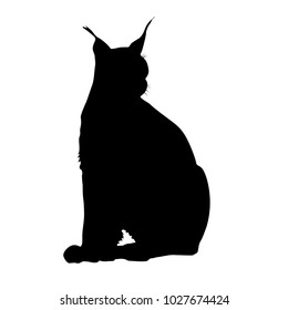 Silhouette of the Lynx on a white background.