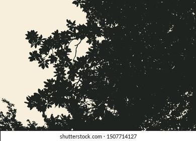 Silhouette Of Magnolia Tree. Vector Illustration.